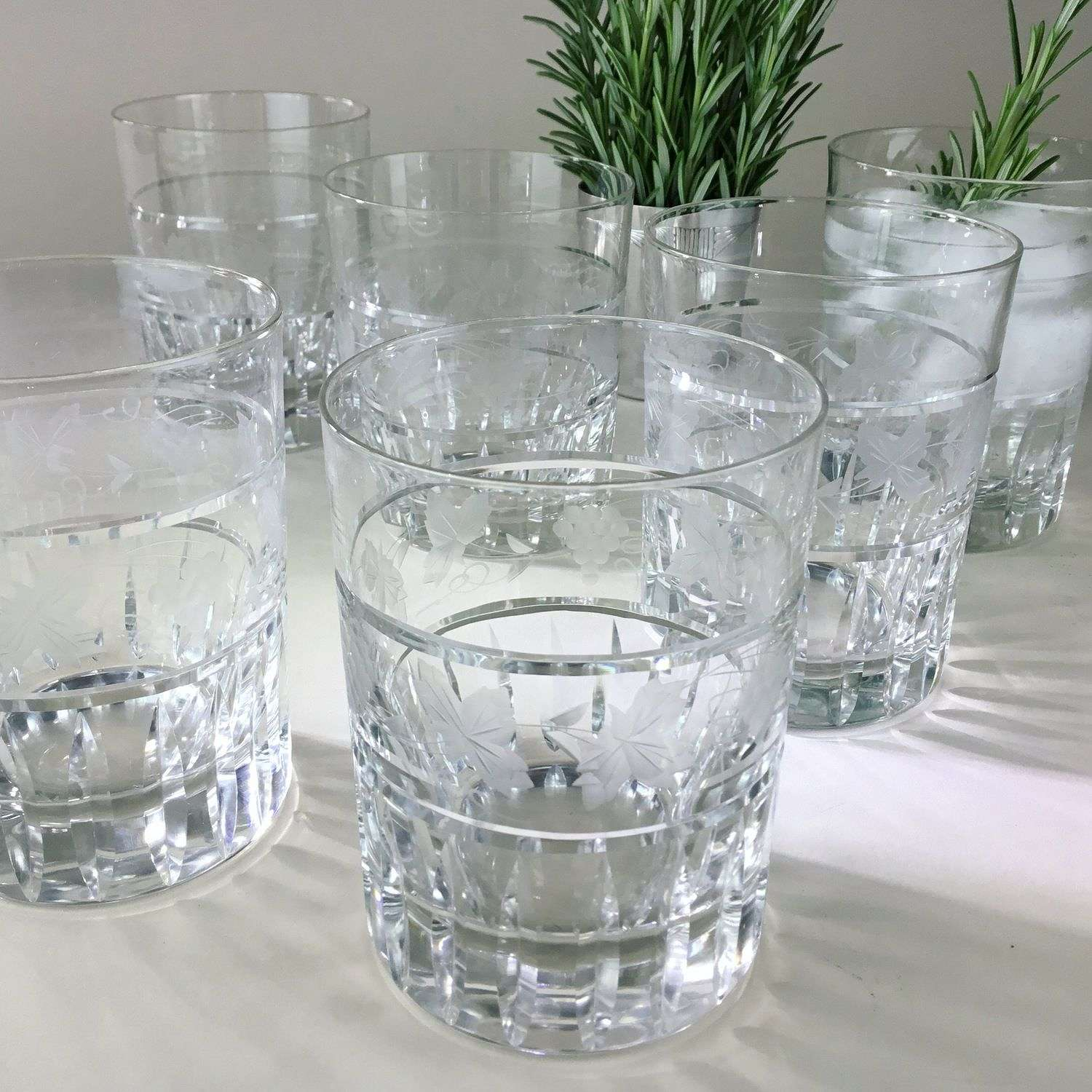 Striking set of six etched and cut glass tumblers