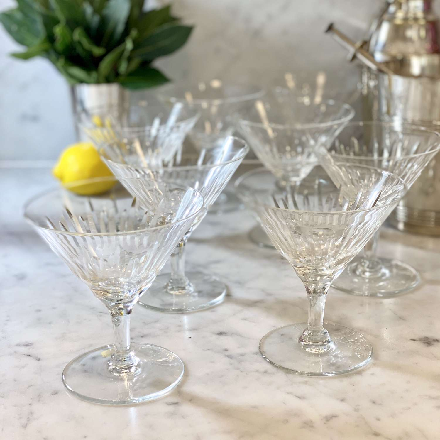 Mid Century low stem Martini cocktail or champagne coupes